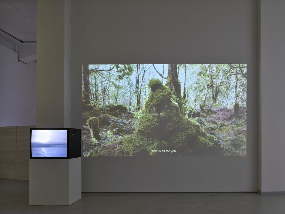 Su Yu Hsin, Hibernatemode, 2019, Installation view KAI 10 | ARTHENA FOUNDATION, Courtesy the artist, Photo: Achim Kukulies, Düsseldorf